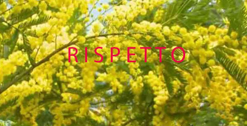 Otto Marzo, rispetto pertutte le donne