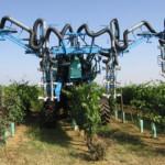 Meccanizzazione agricola nel vigneto
