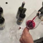 Sorsi con i Top Wine Alto Adige