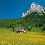 La Regione più Green, il Trentino Alto Adige