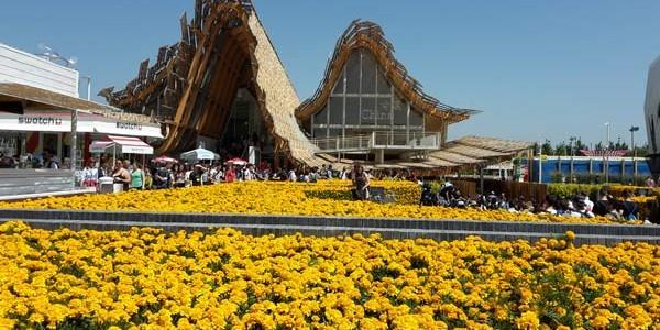 Percossi e racconti dall'Expo