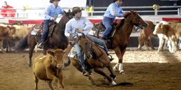 Westernshow a Fieracavalli