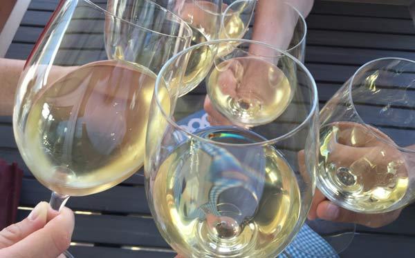 Brindisi-vino-trentino