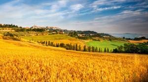 Misure per l'agricoltura