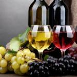 Il patrimonio vinicolo italiano nelle scuole