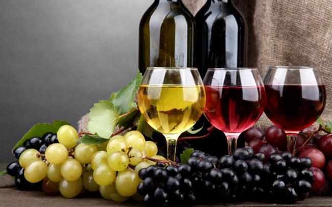 consulta-nazionale-del-vino