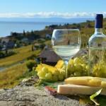 Strada dei vini dell'Alsazia e dello Champagne