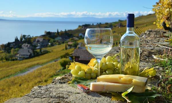itinerari-del-vino-in-Francia