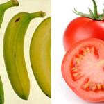 Alimenti non tutto va nel frigorifero