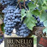 Doc, 50 anni del Brunello di Montalcino
