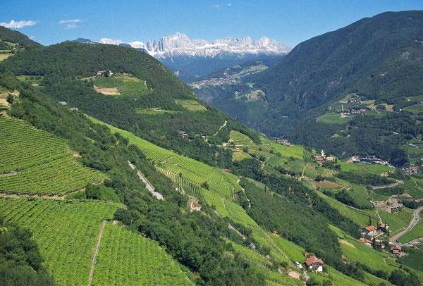 Alto-Adige-vigneti-vignaioli