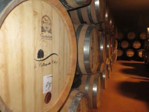 Sorseggiando vino La Collina dei Ciliegi