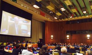 Brani di Levi all'ONU