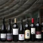 Schiava, vino simbolo della piacevole compagnia
