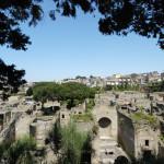 Superdirettori per riorganizzare il sistema museale italiano