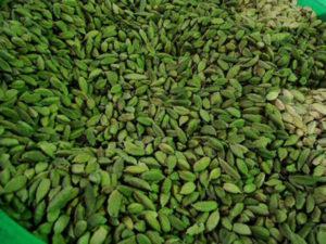 Cardamono-sostanza aromatica