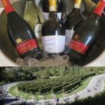Prosecco Cycling e Villa Sandi