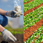 Agrari senza frontiere, accordo Cia Agia