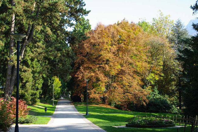 boschi-parco_delle_terme_di_levico