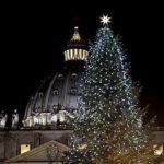 Albero da Scurelle a Piazza San Pietro