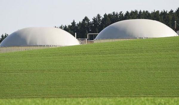 rifiuti-fanghi-biometano