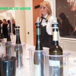 Sinfonia nei calici dei vini dell'Alto Adige