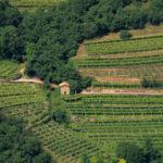 Corso per imprenditori agricoli