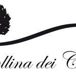 Banner La Collina dei Ciliegi