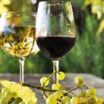 Importatori di vino, i maggiori Usa e Gran Bretagna