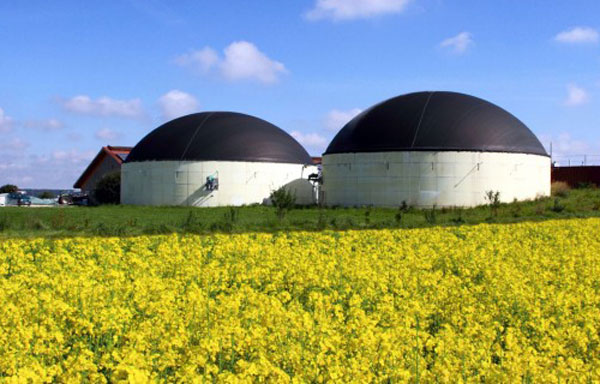 Biogas, occupazione e prospettive. Energie Rinnovabili