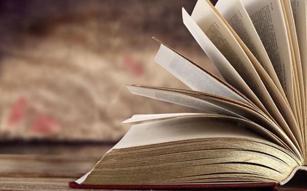 Limiti della letteratura? Riflessioni