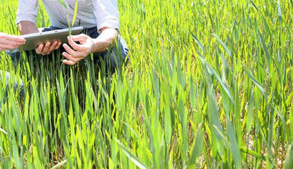 Sondaggio di Fieragricola su precision farming