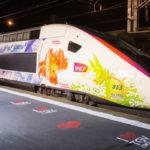 TGV, ferrovie francesi, collegamenti alla Costa Atlantica