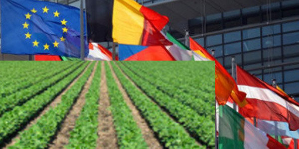 PAC, approvate nuove norme per l'agricoltura