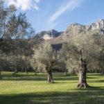 Paesaggi rurali storici, sei nuove aree iscritte