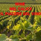 Wine vini eccellenti