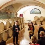 Cottini Wine Monte Zovo, una cantina moderna ricca di valori
