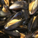 Cozze refrigerate contaminate da Escherichia Coli