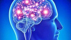 La  nuova RM, macchina per il cervello