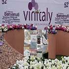 Wine Vinitaly 2018