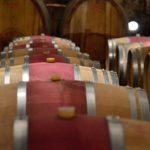 Avvento della Strada del Vino dell'Alto Adige