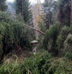 Stava, sentiero della Memoria sul Monte Prestavèl