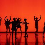 Danza, Bermudas Tequila Sunrise, migliore produzione