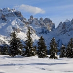 Adamello Brenta, manifestazioni e natura