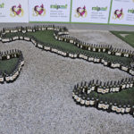 Mipaaft a Vinitaly, ospiti e degustazioni