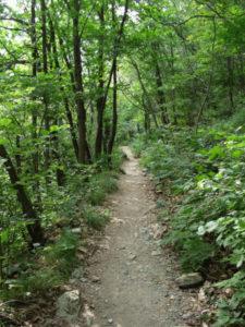 I sentieri, si incontrano alla sommità del monte
