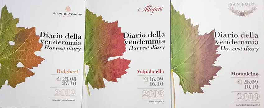 Harvest diary wine Allegrini