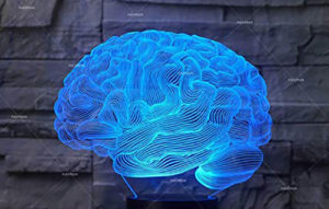 Universo, processi, modello olografico