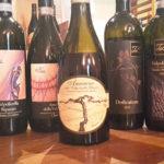 Passione vino Terre di Leone