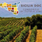 Vini Doc Sicilia 90 milioni di bottiglie